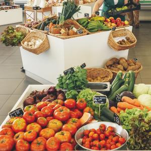 nutrientes para um bom sistema imunitário